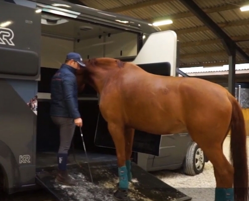loading your horse on a side van